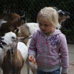02-hagenbecks-tierpark_lk_099